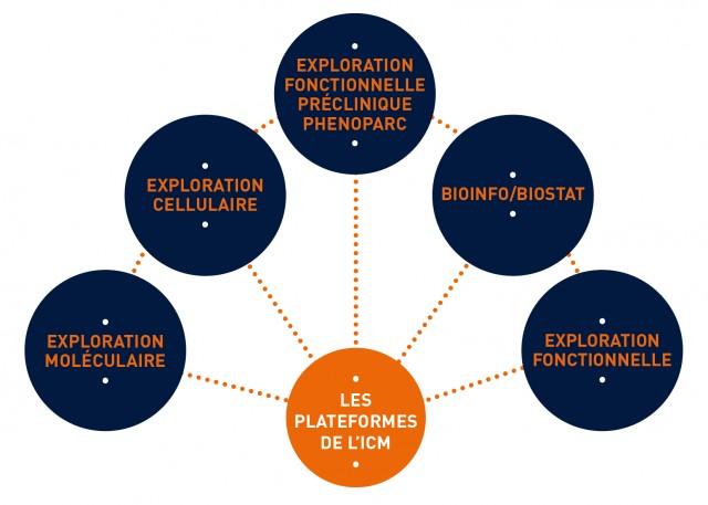 icm_illustration-plateforme-fr01-e1443105499952